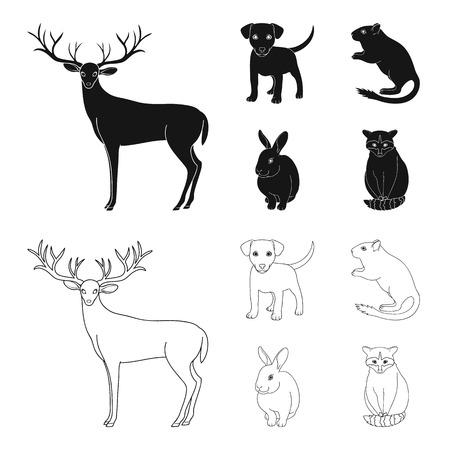 Chiot, rongeur, lapin et autres espèces animales.Animaux mis icônes de la collection en noir, contour style vecteur symbole stock illustration web.