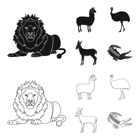 lama, ostrich emu, young antelope, animal crocodile. Wild animal, bird, reptile set collection icons in black,outline style vector symbol stock illustration web. Vettoriali