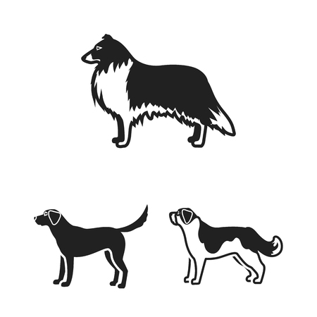 Dog breeds black icons in set collection for design.Dog pet vector symbol stock  illustration.  イラスト・ベクター素材