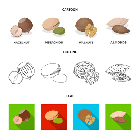 Different kinds of nuts set collection icons in cartoon,outline,flat style vector symbol stock illustration web.