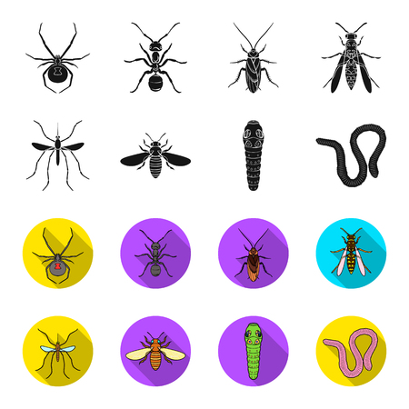 Worm, centipede, wasp, bee, hornet .Insects set collection icons in black,flet style vector symbol stock illustration web.