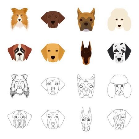 Muzzle of different breeds of dogs.Dog of the breed St. Bernard, golden retriever, Doberman, Dalmatian set collection icons in cartoon,outline style vector symbol stock illustration web.