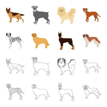 Dog breeds cartoon,outline icons in set collection for design.Dog pet vector symbol stock web illustration.