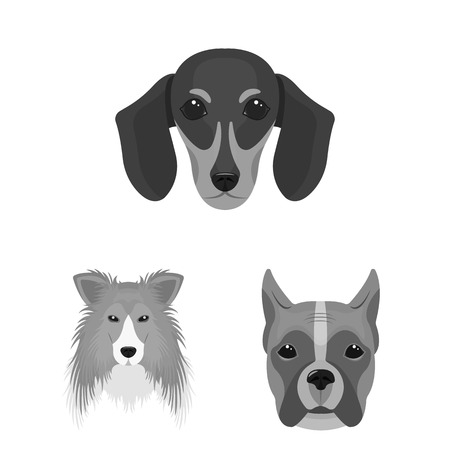 Dog breeds monochrome icons in set collection for design.Muzzle of a dog vector symbol stock  illustration.