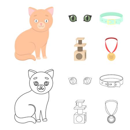 Kitten set collection illustration
