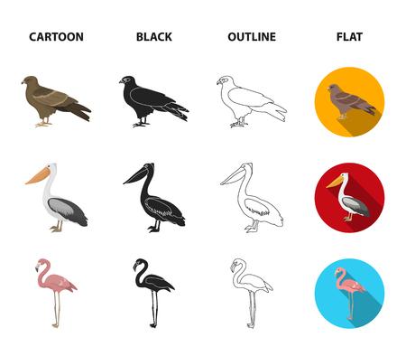 Kite, pelican, flamingo birds set collection icons in cartoon, black, outline and flat style Banco de Imagens - 98190122