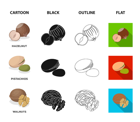 Hazelnut, pistachios and walnut icons in cartoon, black, outline and flat style Illustration