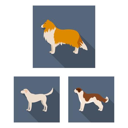犬はデザインのためのセットコレクションで平らなアイコンを繁殖します。犬ペットベクターシンボルストックウェブイラスト。