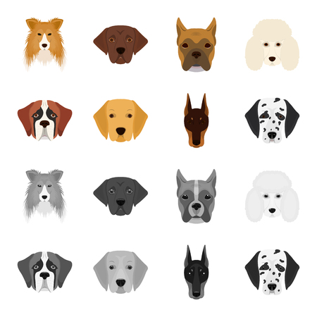 Dog of the breed St. Bernard, golden retriever, Doberman, Dalmatian set collection icons in cartoon, monochrome style vector symbol stock illustration web. Illustration