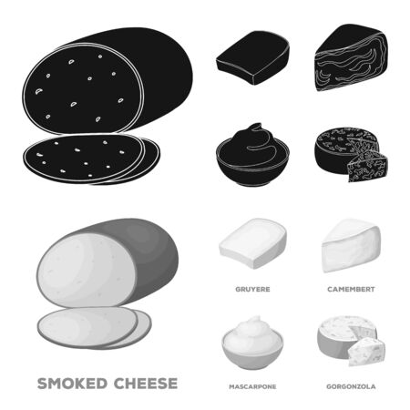 Gruyere, camembert, mascarpone, gorgonzola.Different types of cheese set collection icons in black,monochrom style vector symbol stock illustration .