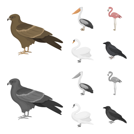 Birds set collection icons in cartoon,monochrome style vector symbol stock illustration web. Banco de Imagens - 98342607