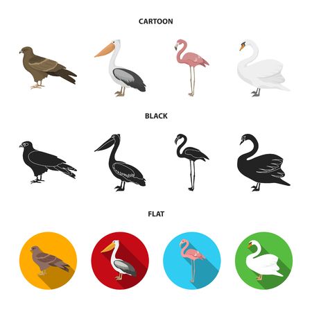Kite, pelican, flamingo, swan. Birds set collection icons in cartoon,black,flat style vector symbol stock illustration .