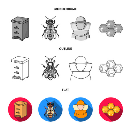 A frame with honeycombs, a ladle of honey, a fumigator from bees, a jar of honey.