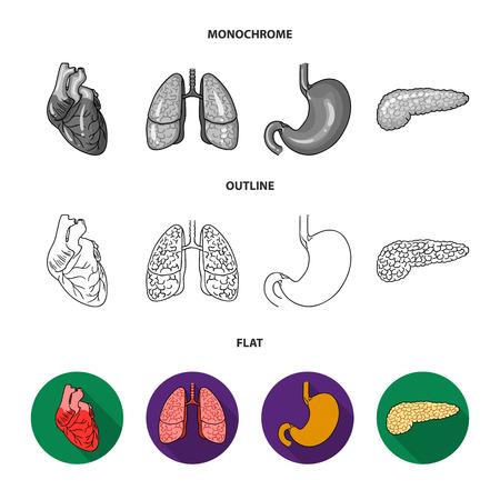 Liver, gallbladder, kidney, brain. Human organs set collection icons in flat, outline, monochrome style vector symbol stock illustration web.