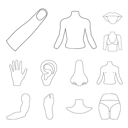 Part of the body, limb outline icons in set collection for design. Human anatomy vector symbol stock web illustration.