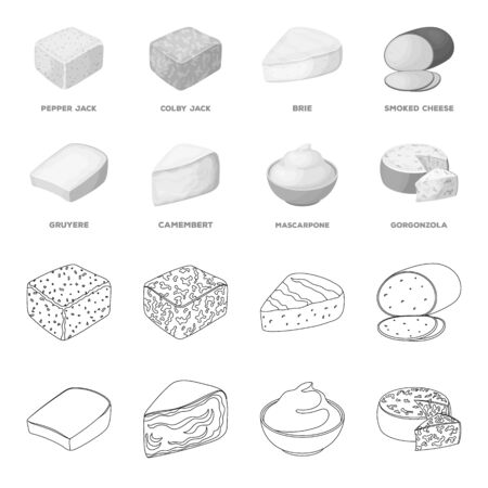 Gruyere, camembert, mascarpone, gorgonzola. Different types of cheese set collection icons in outline, monochrome style vector symbol stock illustration web.