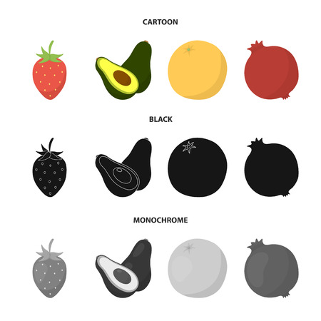 Strawberry, berry, avocado, orange, pomegranate.Fruits set collection icons in cartoon,black,monochrome style vector symbol stock illustration web. Illustration