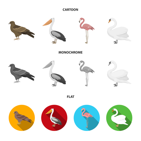 Kite, pelican, flamingo, swan. Birds set collection icons in cartoon,flat,monochrome style vector symbol stock illustration . Illustration