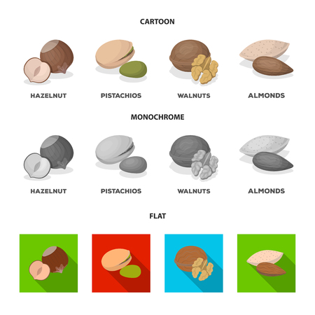 Hazelnut, pistachios, walnut, almonds.Different kinds of nuts set collection icons in cartoon,flat,monochrome style vector symbol stock illustration web. Illustration