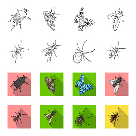 Insects set collection icons in outline, and colored style vector symbol stock isometric illustration web.