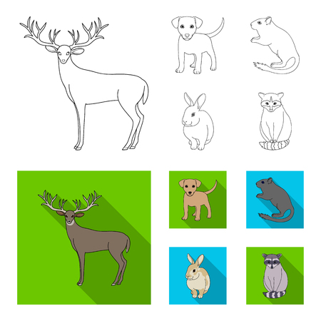 Puppy, rodent, rabbit and other animal species. Animals set collection icons in outline,flat style vector symbol stock illustration web. Illustration
