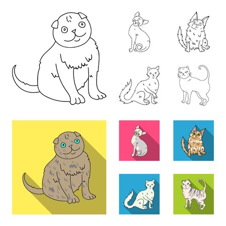 Turkish Angora, British longhair and other species. Cat breeds set collection icons in outline,flat style vector symbol stock illustration web. Stockfoto - 98802592