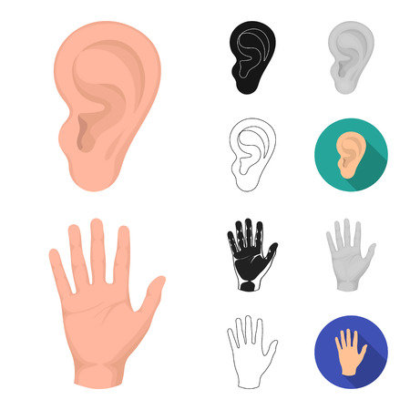 Part of the body outline icons Illustration