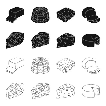 Parmesan, roquefort, maasdam, gauda. Different types of cheese set collection icons in black, outline style vector symbol stock illustration Stock fotó - 99029483