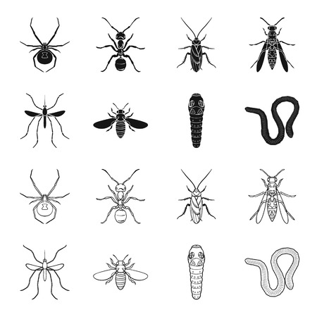 Worm, centipede, wasp, bee, hornet. Insects set collection icons in black, outline style vector symbol stock illustration