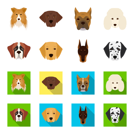 Different dogs set collection icons in cartoon and flat style