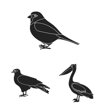 Silhouette bird collection Illustration