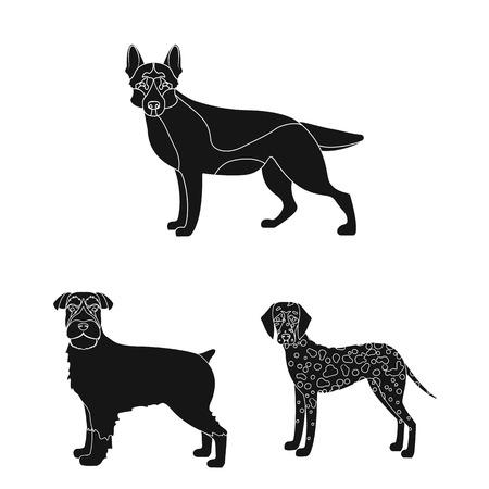 Dog breeds black icons in set collection for design. Illustration