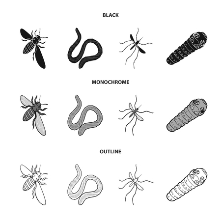 Earthworm, caterpillar and insect set collection icons.