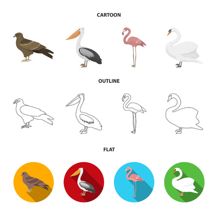Kite, pelican, flamingo, swan. Birds set collection icons in cartoon,outline,flat style vector symbol stock illustration web.
