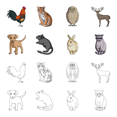 Animals set collection icons