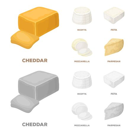 Mozzarella, feta, cheddar, ricotta.Different types of cheese set collection icons in cartoon,monochrome style vector symbol stock illustration web.