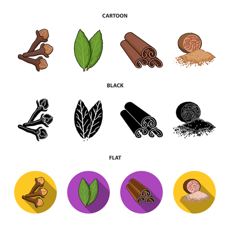 Clove, bay leaf, nutmeg, cinnamon.Herbs and spices set collection icons in cartoon,black,flat style vector symbol stock illustration web. Illustration