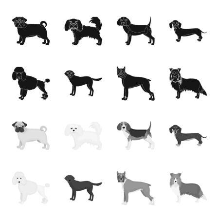 Dog breeds black,monochrome icons in set collection for design.Dog pet vector symbol stock  illustration.