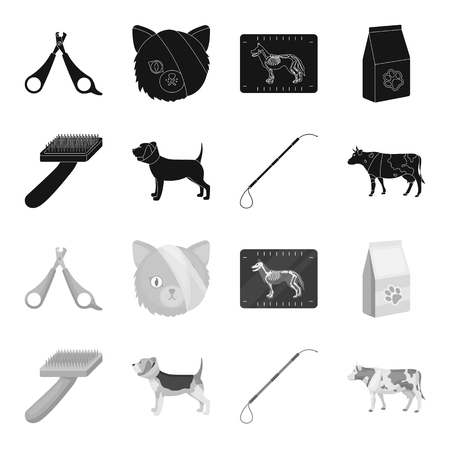 Dog, cow, cattle, pet .Vet Clinic set collection icons in black,monochrome style vector symbol stock illustration web.