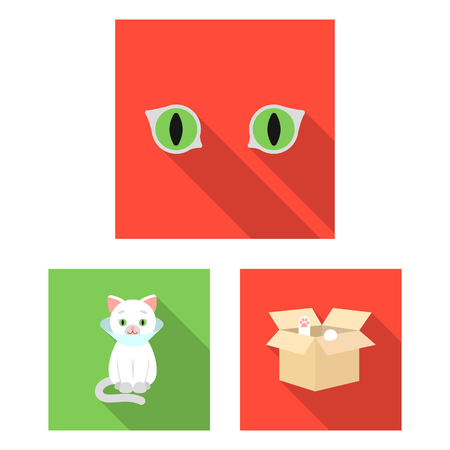 An animal cat flat icons in set collection for design. Caring for a cat vector symbol stock  illustration.