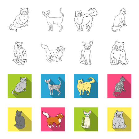 Sphinx, nibelung,norwegian forest cat and other species. Cat breeds set collection icons in outline,flet style vector symbol stock illustration web.