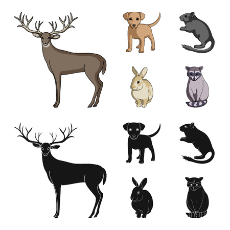 Puppy, rodent, rabbit and other animal species.Animals set collection icons in cartoon,black style vector symbol stock illustration .