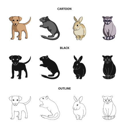 Puppy, rodent, rabbit and other animal species.Animals set collection icons in cartoon,black,outline style vector symbol stock illustration Illustration