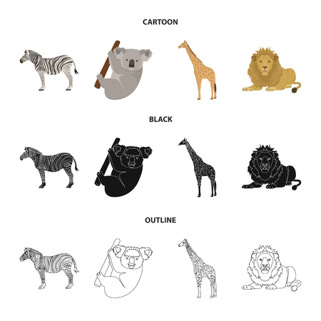 African zebra,animal koala, giraffe, wild predator, lion. Wild animals set collection icons in cartoon,black,outline style vector symbol stock illustration .