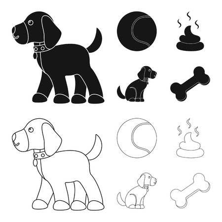 Dog related icons vector illustration
