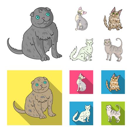 Turkish Angora, British longhair and other species. Cat breeds set collection icons in cartoon,flat style vector symbol stock illustration .