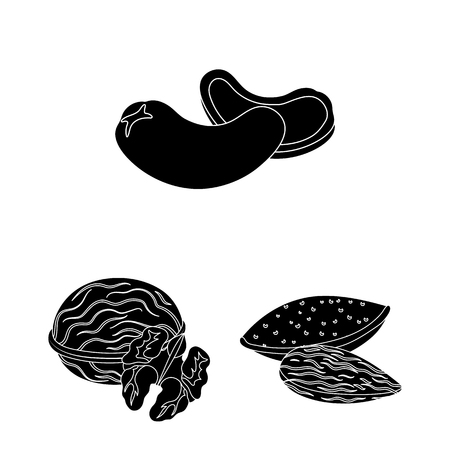 Different kinds of nuts black icons in set collection for design.Nut Food vector symbol stock  illustration. Vectores