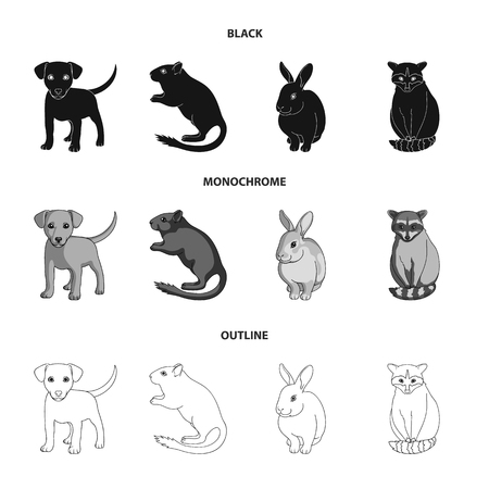 Animals set collection icons in black. Illustration