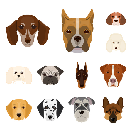 Dog breeds cartoon icons in set collection for design.Muzzle of a dog vector symbol stock  illustration.