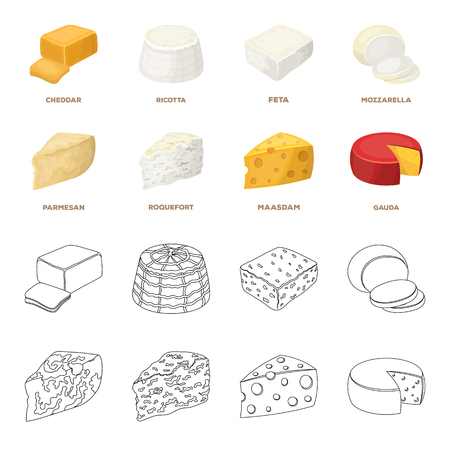 Parmesan, roquefort, maasdam, gauda.Different types of cheese set collection icons in cartoon,outline style vector symbol stock illustration web. Stock fotó - 100644418